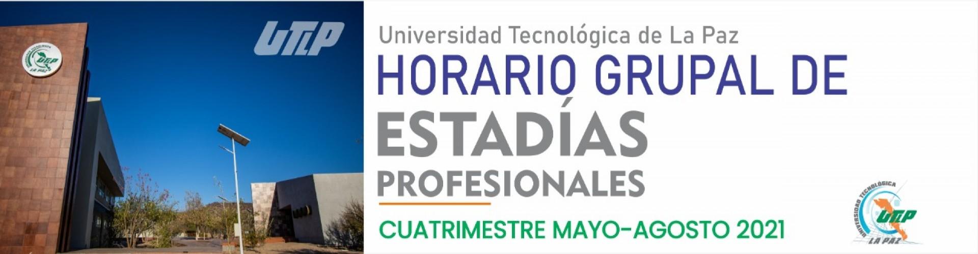 Horarios grupales para estadías profesionales Mayo - Agosto 2021